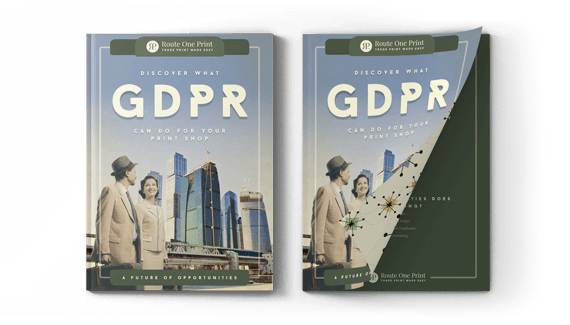 GDPR Ebook Description Image
